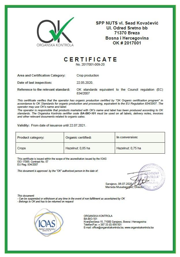 Certificate OK 2020